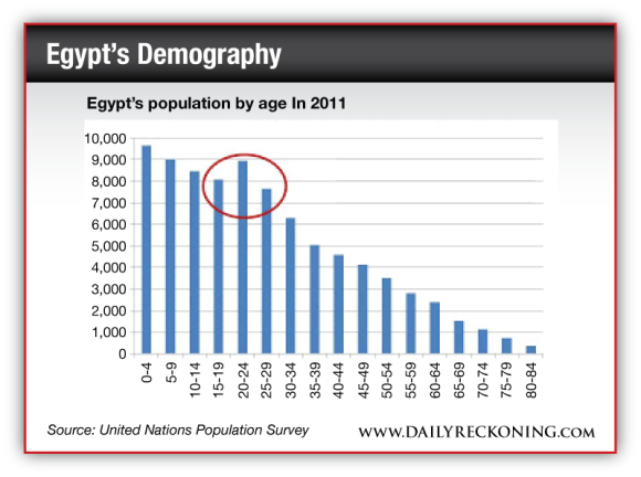 Egypt's population by age in 2011