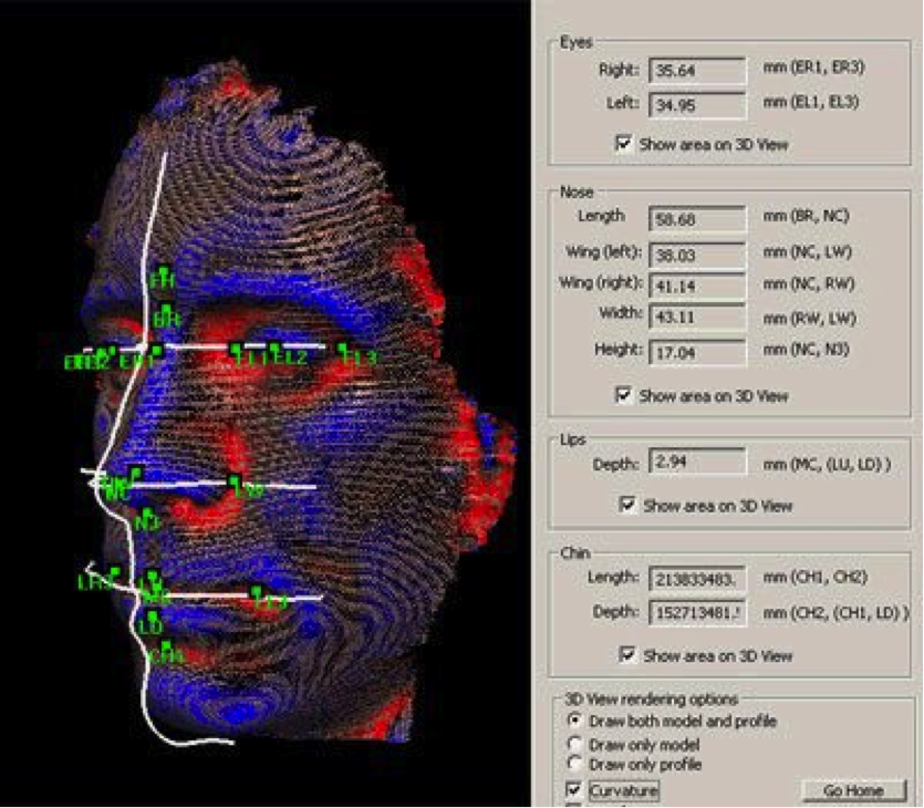 Biometric facial recognition software