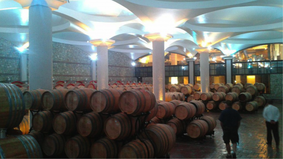 Wine Barrels Stobi