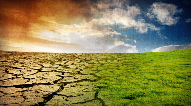 Profit from Global Warming, Even if You Don't Believe In It