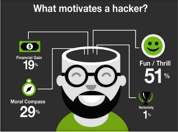What Motivates a Hacker?