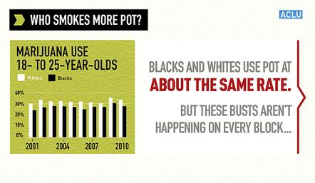 Statistics of Marijuana Use Between Black People and White People