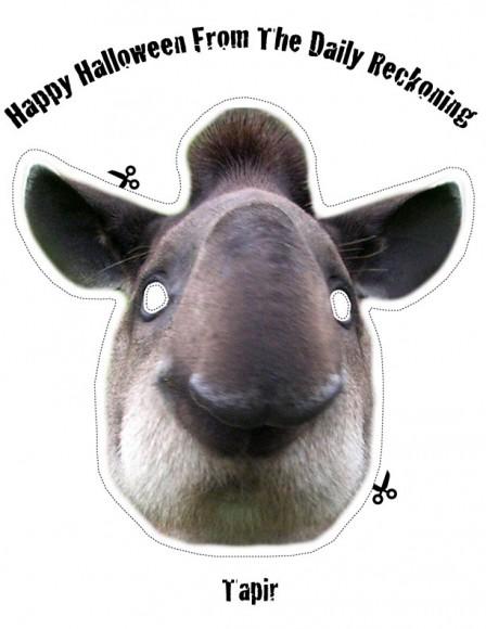 Tapir Halloween Mask