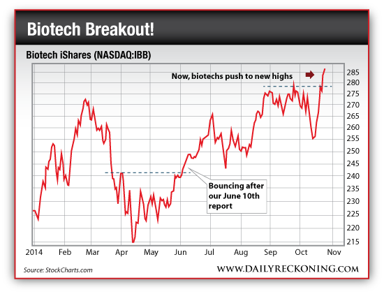 Biotech Stocks: Biotech iShares (NASDAQ:IBB), Jan. 2014-Oct. 2014