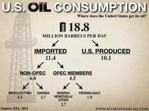 US Oil Consumption Infographic
