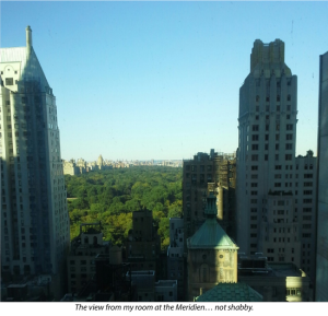 View from Le Parker Meridien Hotel