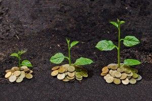Revealed: What Really Creates Economic Growth