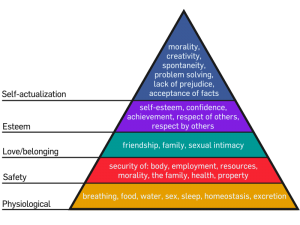 Hierarchy of Needs Pyramid