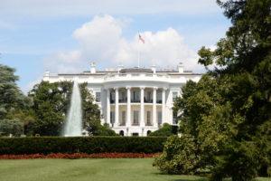 white housewhite house