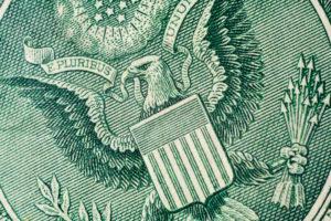 dollar back eagle