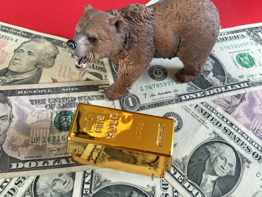 """A Bear Market """"We Are in a ..."""