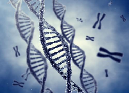 Is Genetically Modified Food Killing Us?